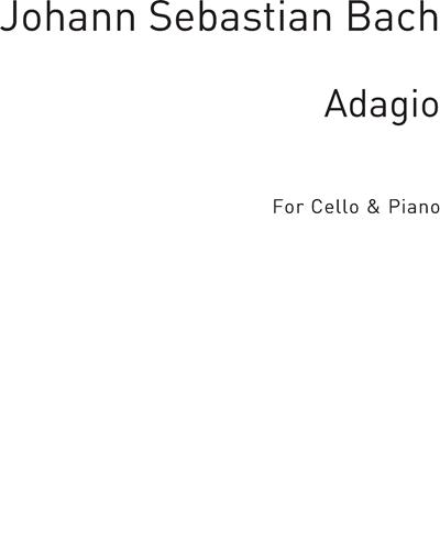 Adagio For Cello & Piano
