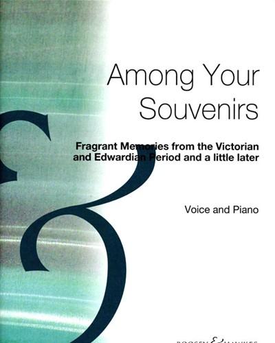 Among Your Souvenirs