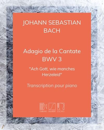 "Adagio de la Cantate BWV 3 (""Ach Gott, wie manches Herzeleid"")"