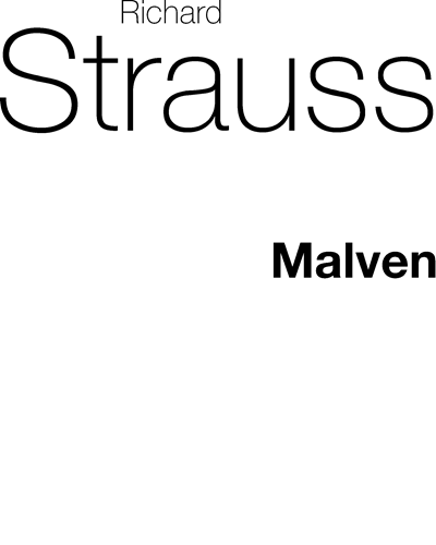 Malven, AV. 304