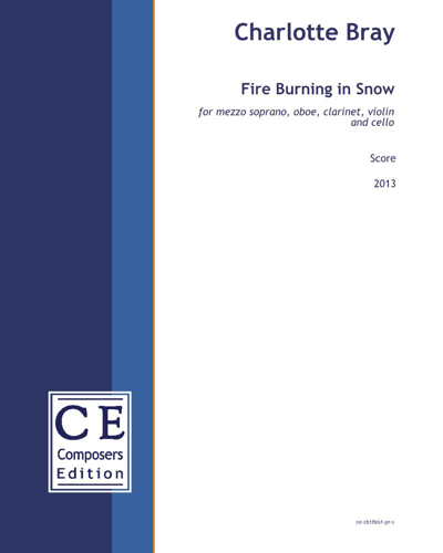 Fire Burning in Snow