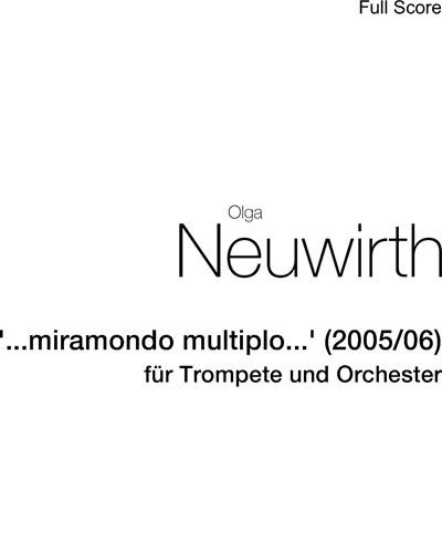 """""""...miramondo multiplo..."""" (2005/06)"""